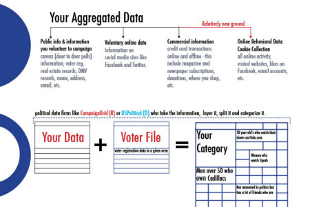The basics of voter targeting Infographic