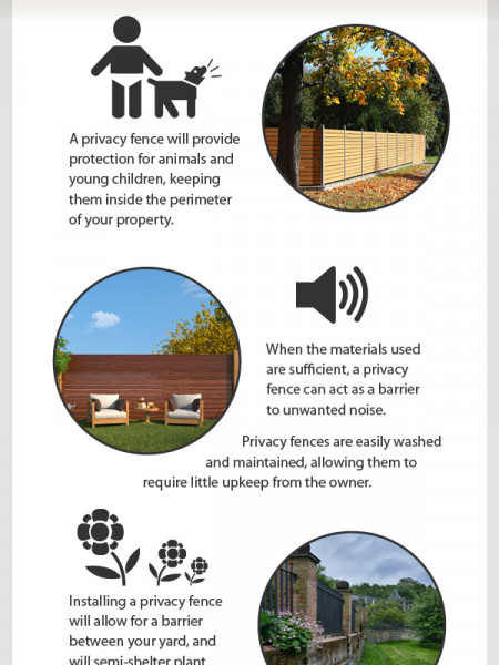 The Benefits of Having a Privacy Fence Infographic