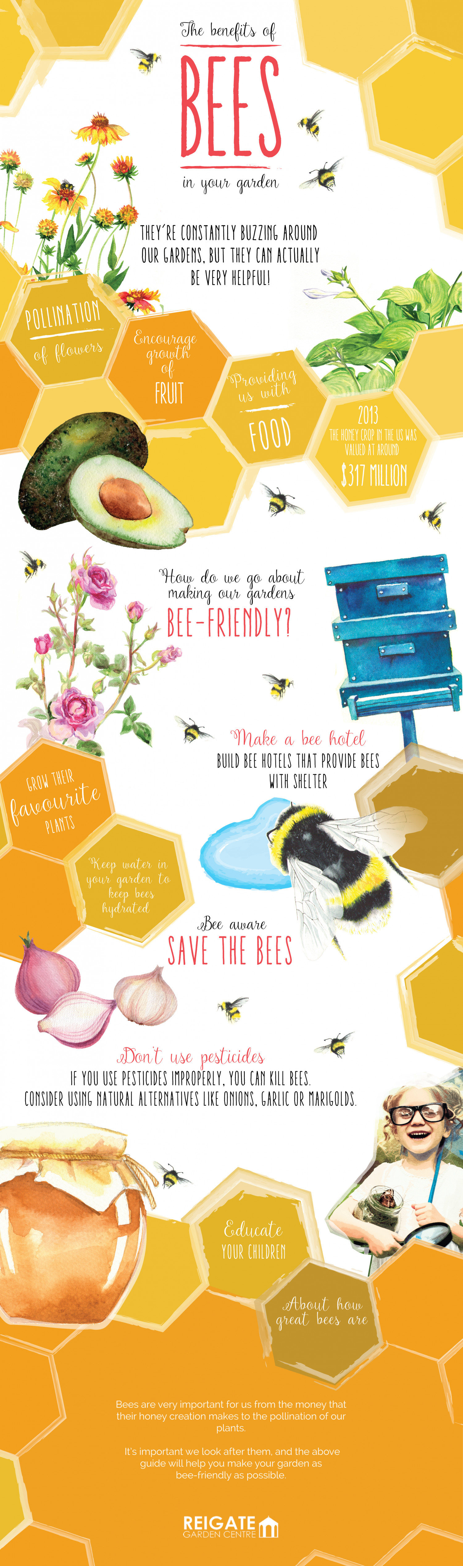 The Benefits of Bees In Your Garden  Infographic