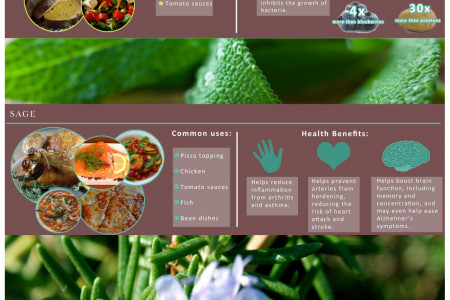 The Benefits of Herbs Infographic