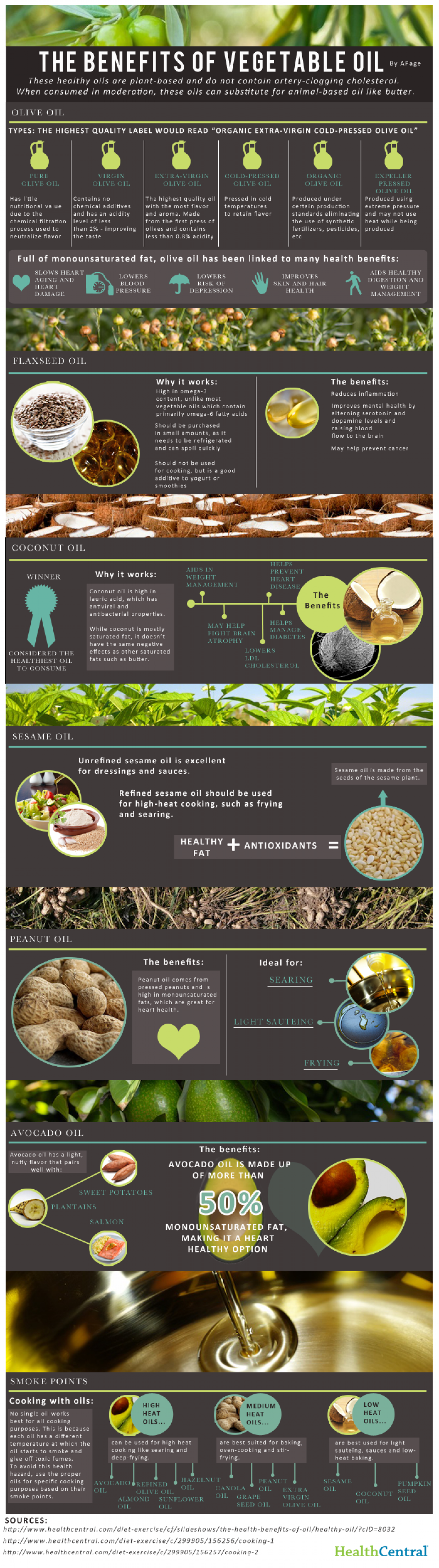 The Benefits of Vegetable Oil Infographic