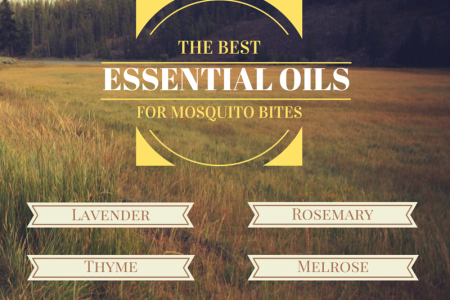 The Best Essential Oils for Mosquito bites Infographic