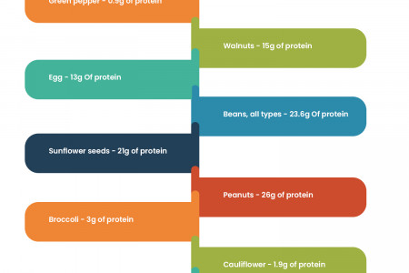 The Best Protein Sources for Vegans and Vegetarians Infographic