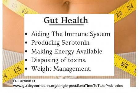 The Best Time To Take Probiotics For Gut Health Infographic