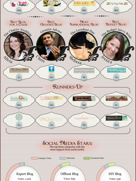 The Best Wedding Blogs  Infographic