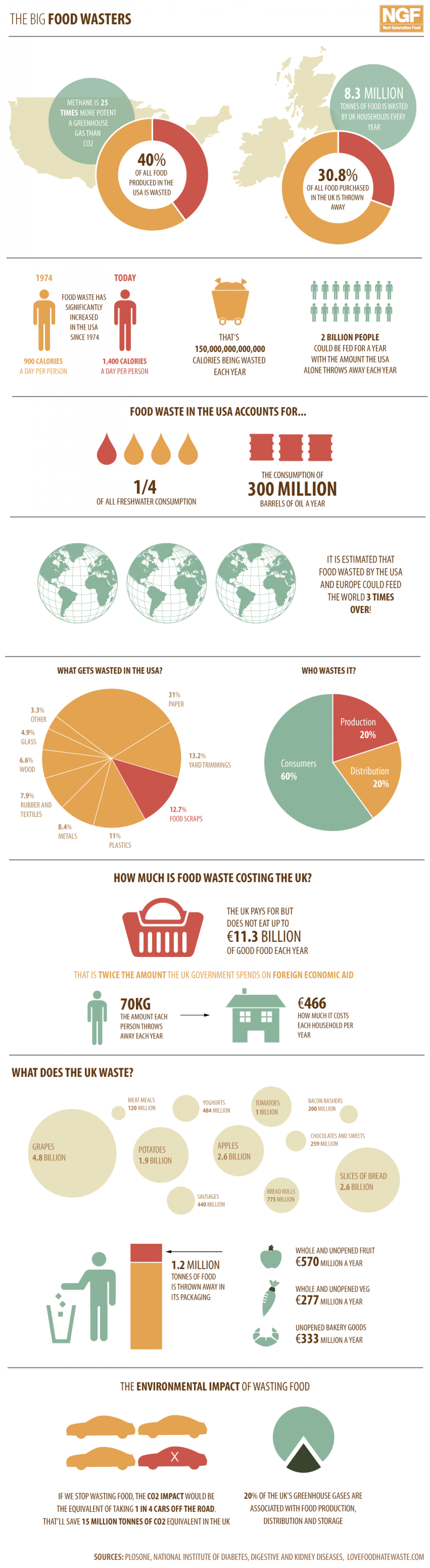 The Big Food Wasters Infographic