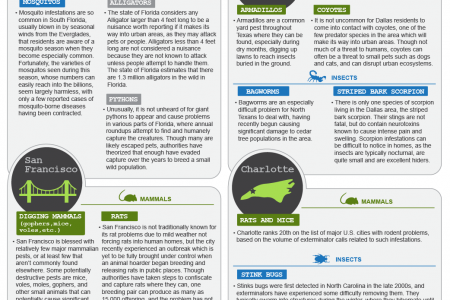 The Biggest Pest Problems In US Cities Infographic