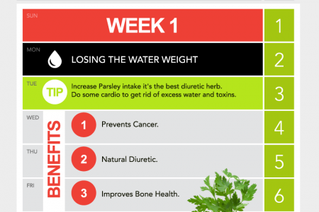 The Bikini Body Calendar: Week 1 Infographic