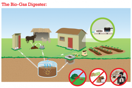 The Bio-Gas Digester: How It Works Infographic