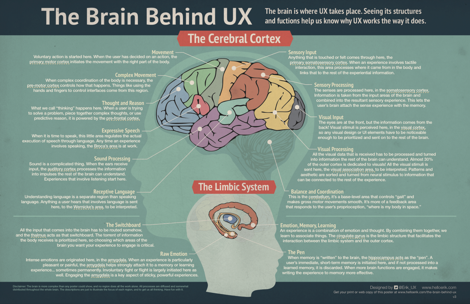 The Brain Behind UX Infographic