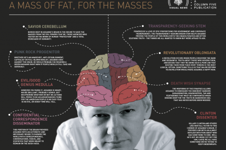The Brain of Julian Assange Infographic