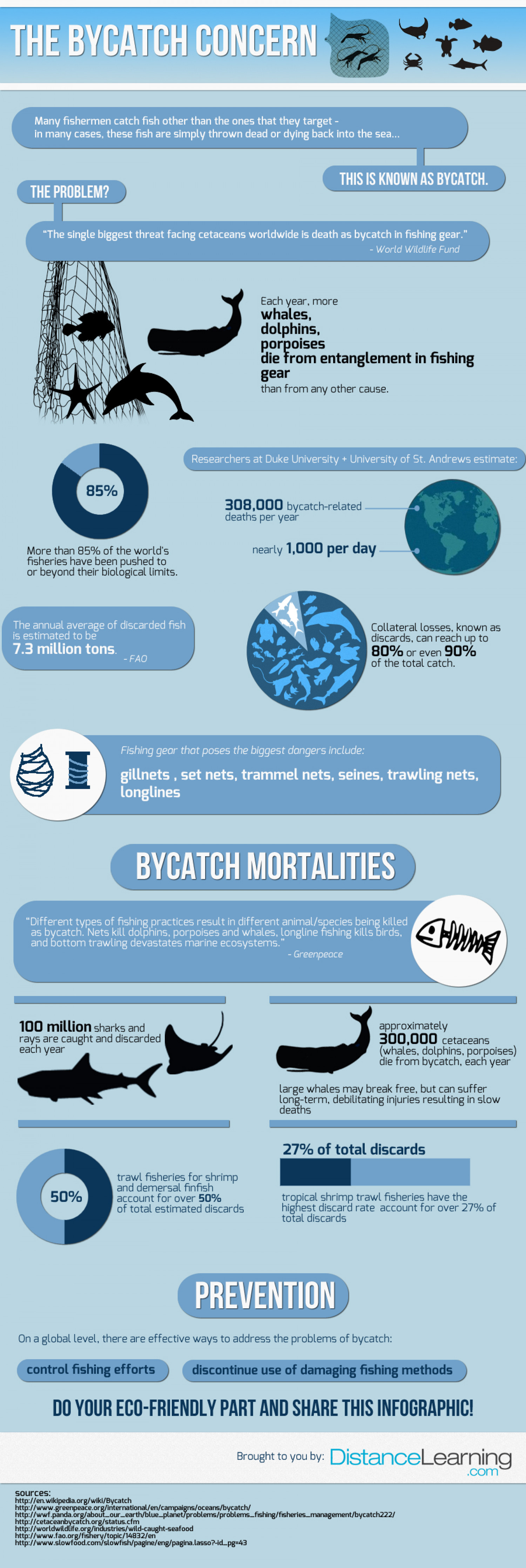 The Bycatch Concern Infographic