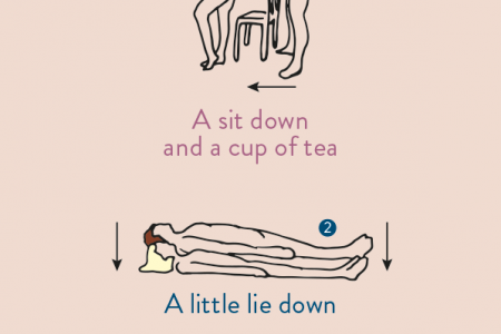 The Calmer Sutra Infographic