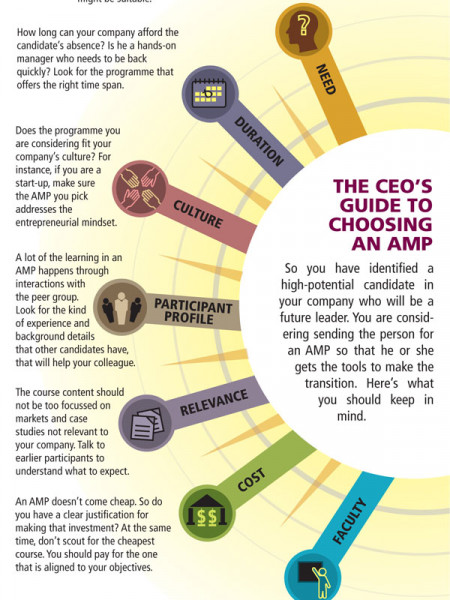 The CEO's Guide To Choosing An AMP Infographic