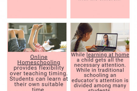The class of one - online homeschooling platform Infographic