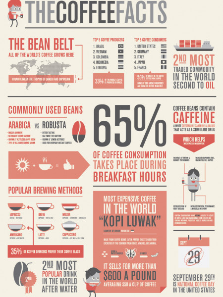 The Coffee Facts Infographic