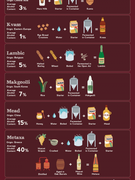 The Compendium of Alcohol Ingredients and Processes Infographic