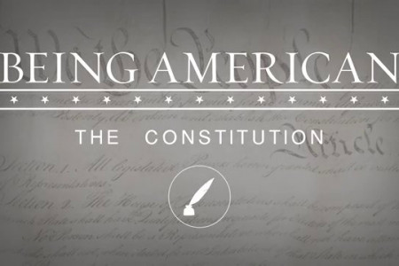 The Constitution Infographic