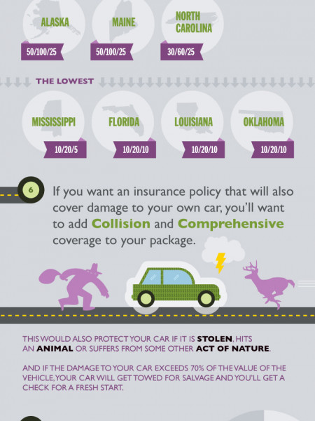 The Cost of Car Insurance  Infographic