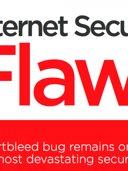 The Cost of Internet Security Flaws Infographic