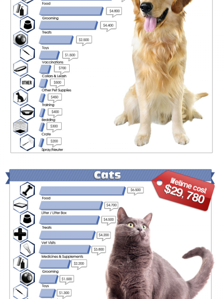 The Costs of Pet Ownership Infographic