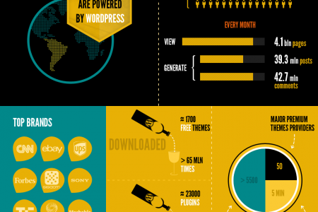 The Current Capacity of WordPress Infographic