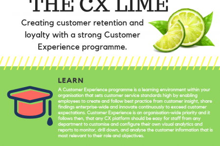 The Customer Experience LIME Infographic