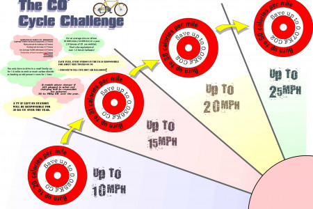 The Cycle Challenge Infographic