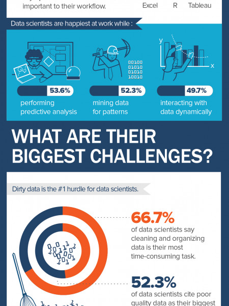The Data Behind Data Scientists - 2015 Infographic