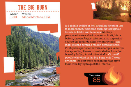 The Deadliest Forest Fires of All Time– Infographic  Infographic