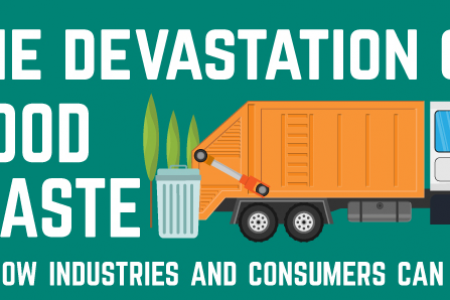 The Devastation of Food Waste Infographic
