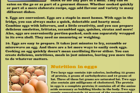 The egg-citing, egg-credible egg Infographic