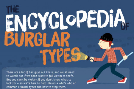 The Encyclopedia of Burglar Types Infographic