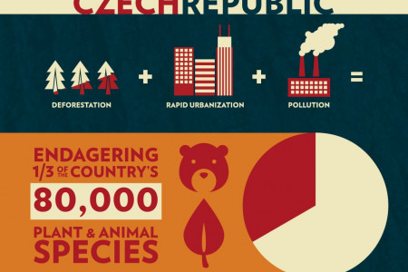The Environment in the Czech Republic Infographic
