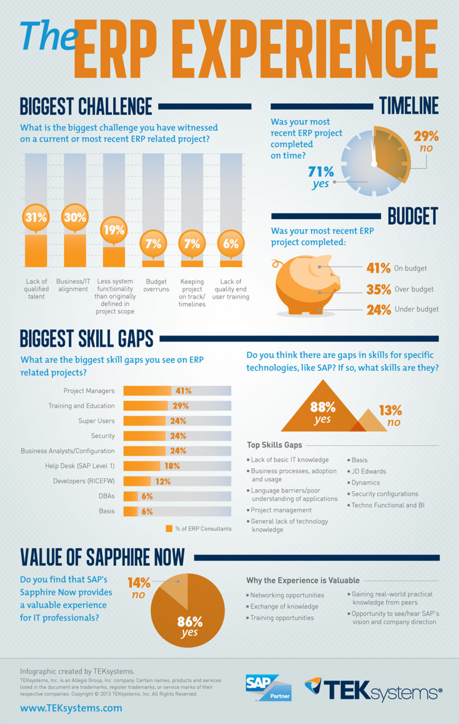 The ERP Experience Infographic