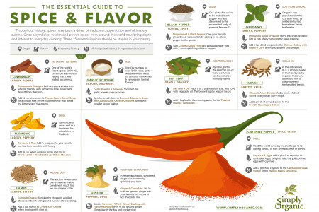 THE ESSENTIAL GUIDE TO SPICE & FLAVOR Infographic