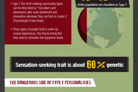 The Extreme Sports Addiction [Infographic] Infographic
