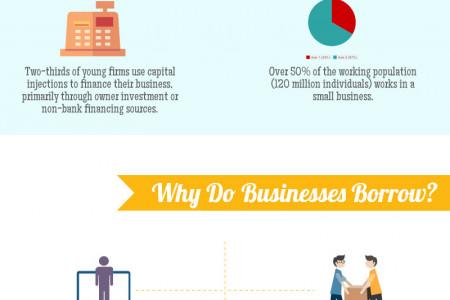 The Facts About Small Business Financing - Infographic Infographic