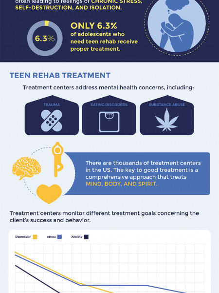 Facts About Teen Rehab Infographic