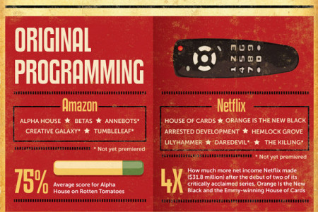The Fight of the Century: Amazon vs. Netflix Infographic