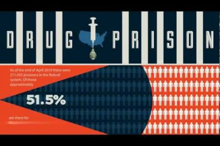 The Financial Cost of Drug Addiction: Video Infographic Infographic