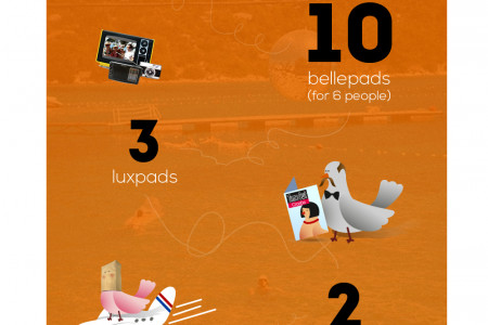 The Garden Festival - INFOGRAPHIC Infographic