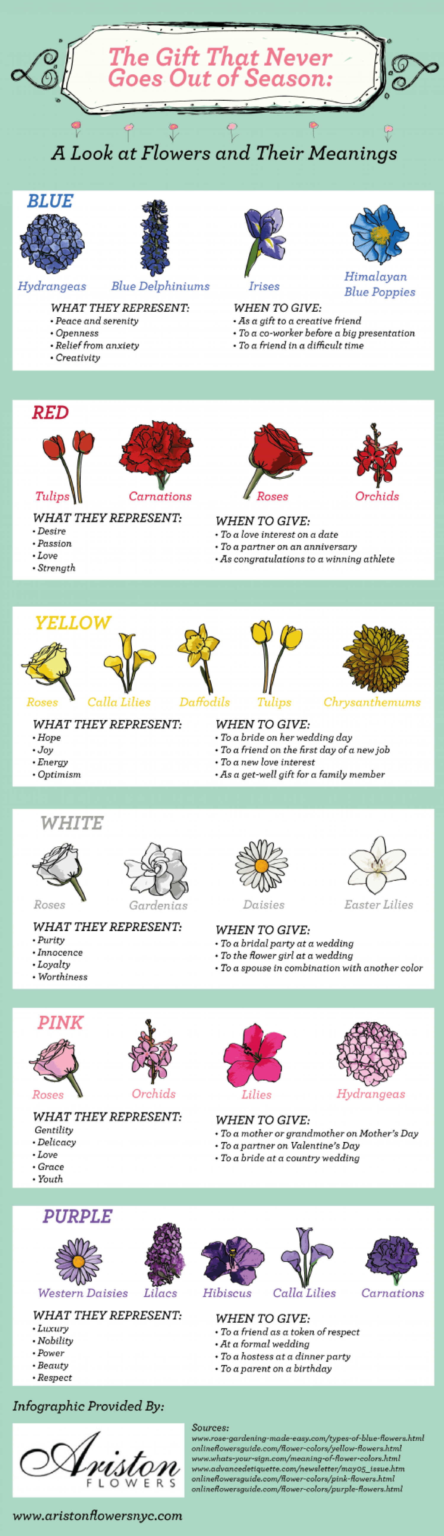 The Gift That Never Goes Out of Season: A Look at Flowers and Their Meanings  Infographic