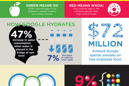 The Google Diet  Infographic