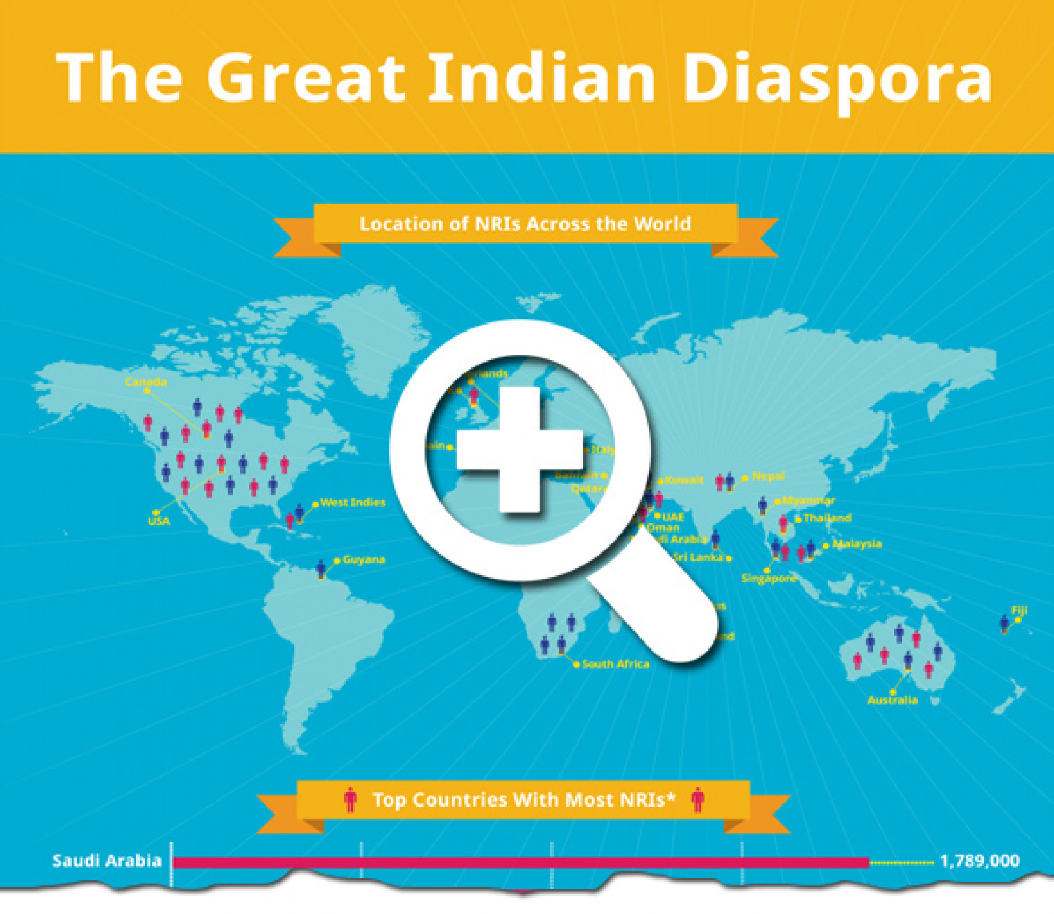 The Great Indian Diaspora Infographic