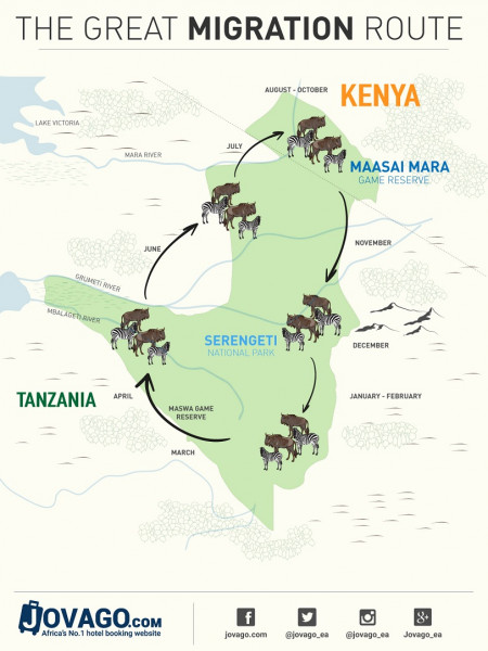 The Great Migration Map Infographic