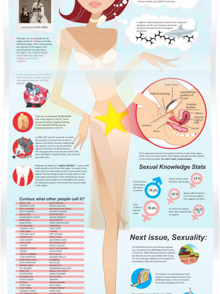 The Great Vagina Infographic