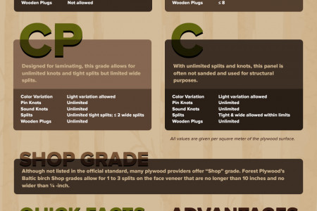 The Guide to Baltic Birch Plywood Infographic
