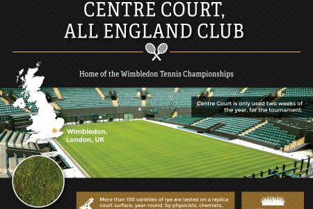 The Hallowed Grounds of Sport Infographic
