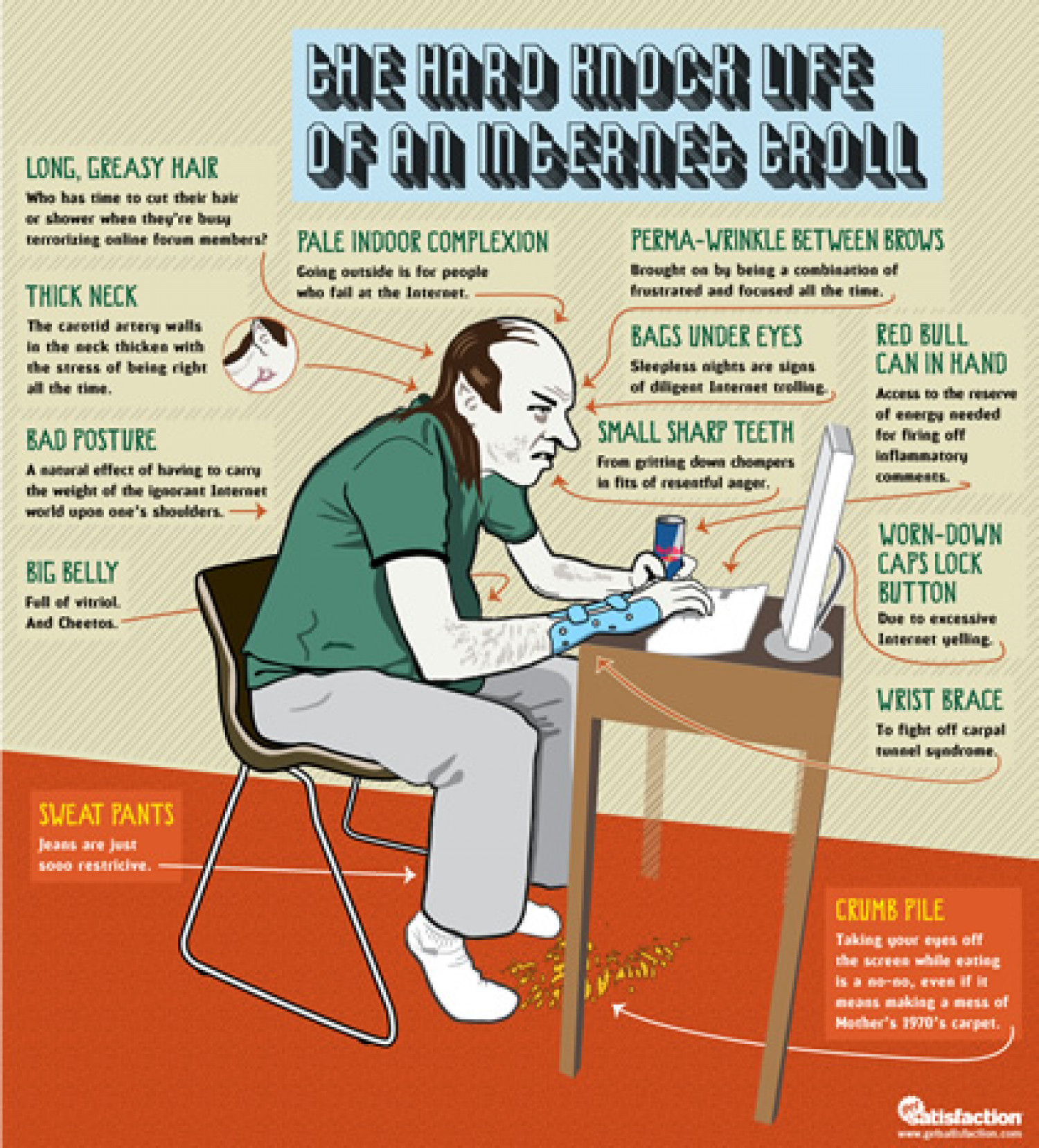 The Hard Knock Life Of An Internet Troll Infographic